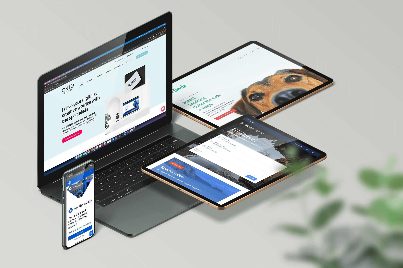 Responsive web Design & Development examples